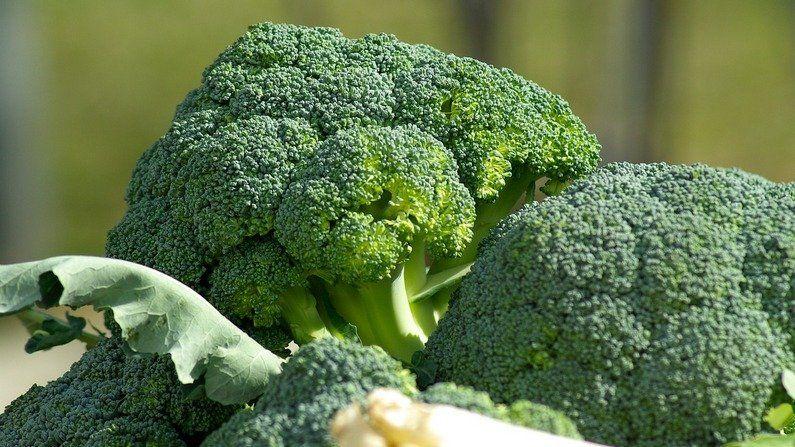 DIM in kruisbloemige groenten